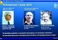 Обладатели Нобелевской премии по физике 2016 года
