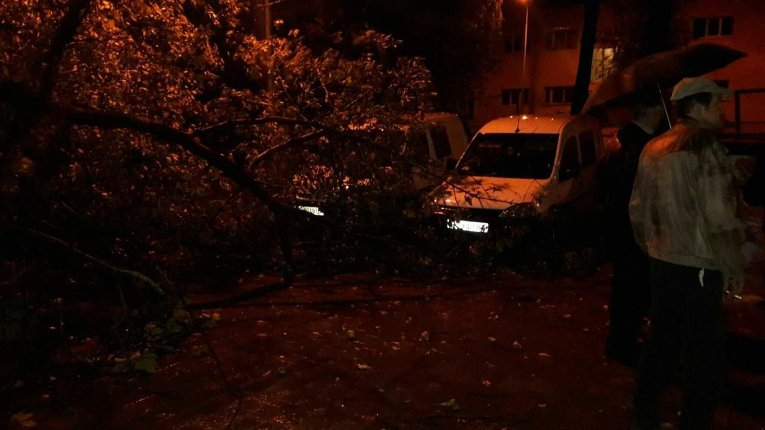 Львов последствия непогоды: грязевые потоки, подтопления домов и падение деревьев