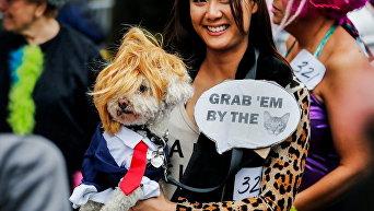 Костюмированная выставка собак в США