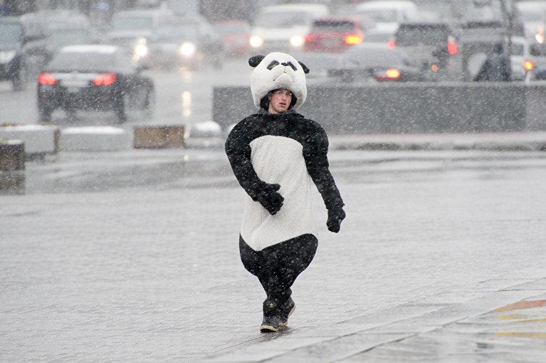 Целый день идет мокрый снег— Погода вКиеве