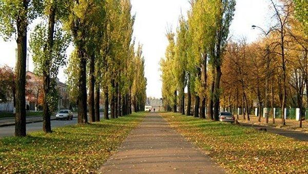 ВКиеве переименовали несколько улиц, скверов, бульвар иплощадь