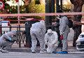 Террористическая атака на посольство Франции в Афинах: работа полиции