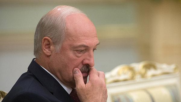 Лукашенко готов организовать проведение выборов вгосударстве Украина