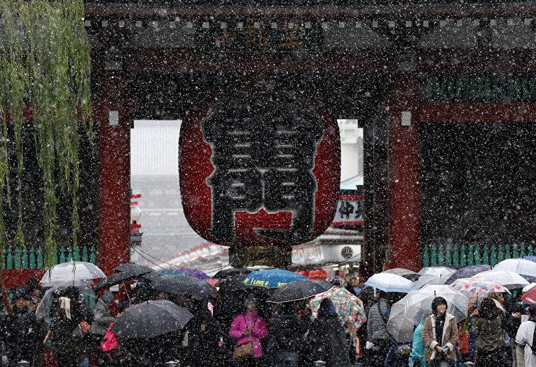 На Токио обрушился первый за 54 года ноябрьский снегопад. Метеорологи заявили, что температура воздуха в Токио составляет минус 3 градуса.