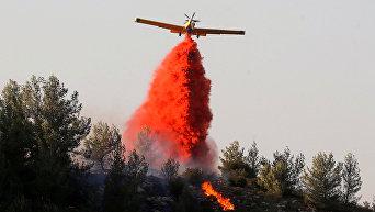 Сильные пожары в Натафе