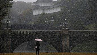 Ноябрьский снег в Токио впервые с 1875 года