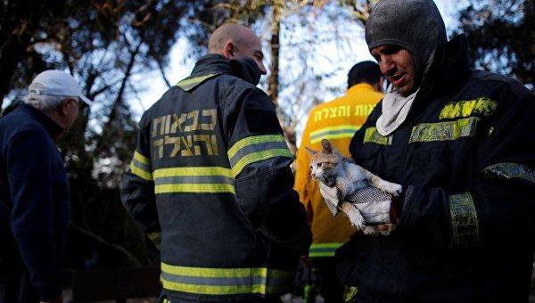 Нанефтеперерабатывающем заводе вИзраиле произошел взрыв