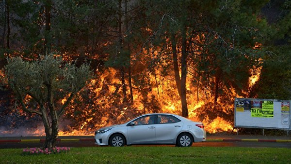 Пожары в израильской Хайфе