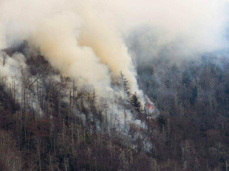 ВСША граждане города Гатлинбург эвакуированы из-за сильнейших лесных пожаров