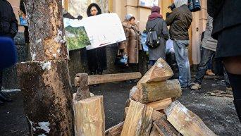 Митинг против намерения властей отменить мораторий на экспорт леса-кругляка