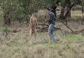 Драка кенгуру и мужчины взорвала интернет. Видео