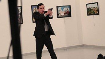 Убийство российского посла в Анкаре