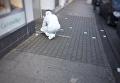 Работа правоохранителей на месте стрельбы в Германии. Архивное фото