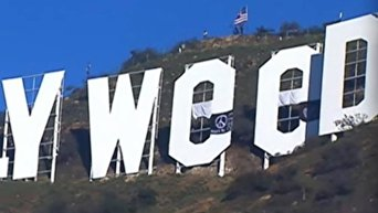 Надпись Голливуд в Лос-Анджелесе испортил любитель марихуаны. Видео