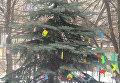 Новогодняя елка в Марьинке