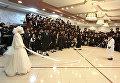 Свадьба хасидских династий Кретшниф и Сигет в Бейт-Шемеше