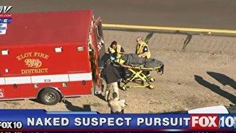 Женщина угнала авто шерифа в США. Видео