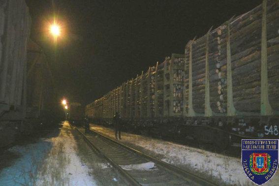 В Одессе полиция перекрыла канал вывоза контрабандного леса в ЕС