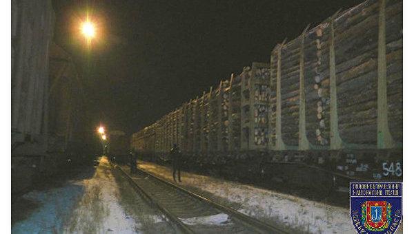 ВОдесской области отыскали 56 вагонов контрабандного леса