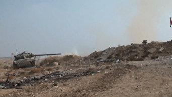 Наступление сирийской армии на боевиков в пригороде Дамаска. Видео