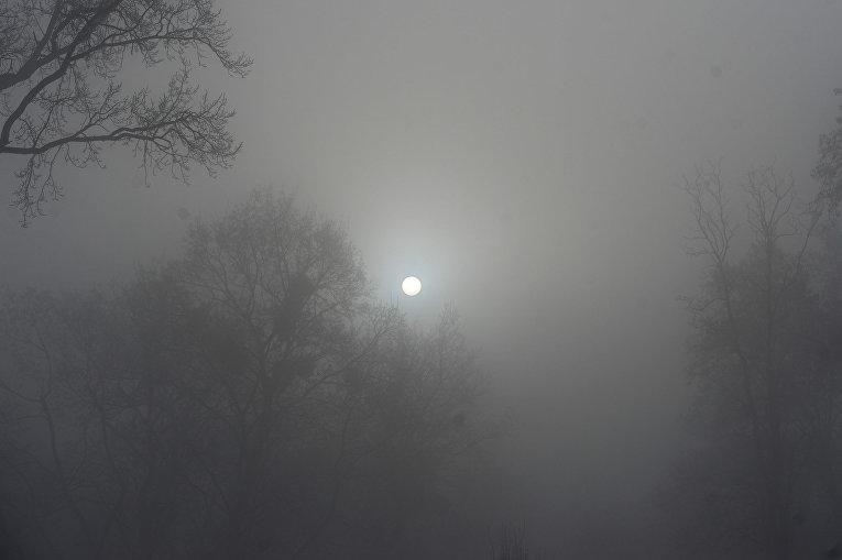 Стала известна причина смога изапаха гари вКиеве— Непожар