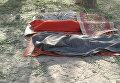 Армия Нигерии по ошибке разбомбила лагерь беженцев в районе Ранн