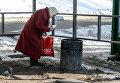 Пожилая женщина собирает пластиковые бутылки