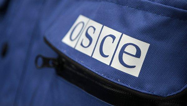 Надпись OSCE на куртке представителя ОБСЕ
