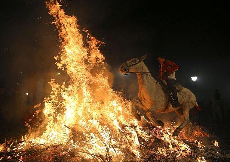 Празднование Дня Святого Антония в Испании