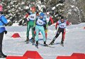 Кубок мира Международного паралимпийского комитета по лыжным гонкам и биатлону