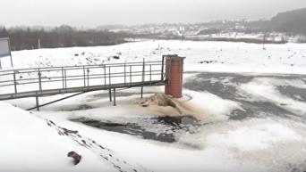 Инспекция мусорного полигона в Грибовичах: комментарий Садового. Видео
