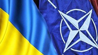НАТО не признает референдум по вступлению Украины в альянс, считают в ДНР