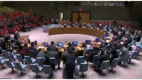 Заседание СБ ООН по Украине