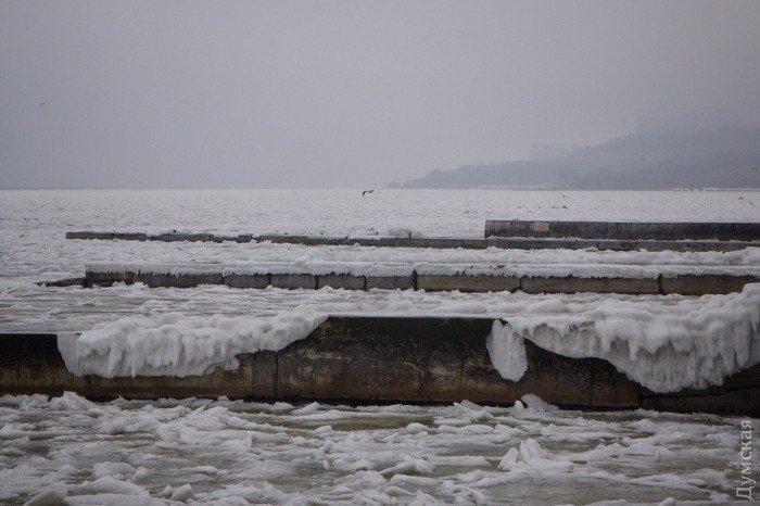 Зимнее море Одессы: чайки и глыбы льда