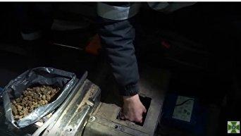Почти 33 кг янтаря изъяли пограничники. Видео
