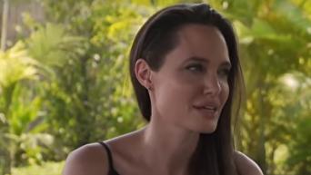 Джоли раскрыли детали развода с Питтом