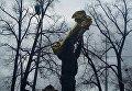 Протестующие в Киеве принесли под АП билет в Липецк на имя Петра Порошенко
