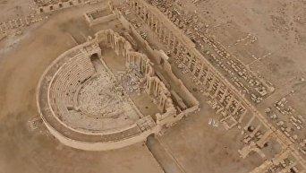 Вновь освобожденная Пальмира с высоты птичьего полета