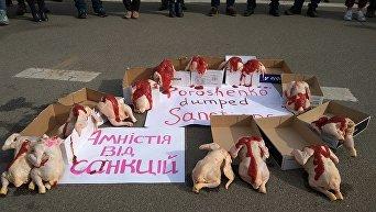 Тушки под АП из-за Иванющенко. Активисты передали Порошенко благодарность