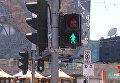 В Мельбурне появились светофоры с зелеными женщинами