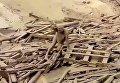 Перуанка едва избежала смерти в грязевом оползне