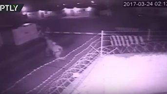 Нападение на базу Росгвардии в Чечне. Видео
