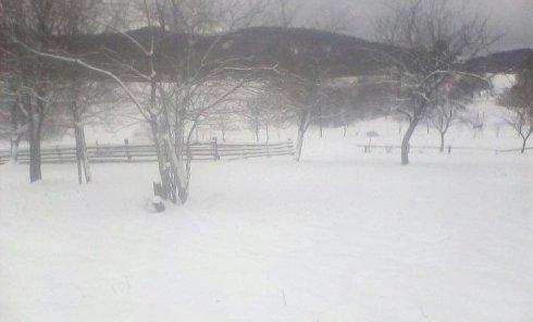 Львовскую область занесло снегом