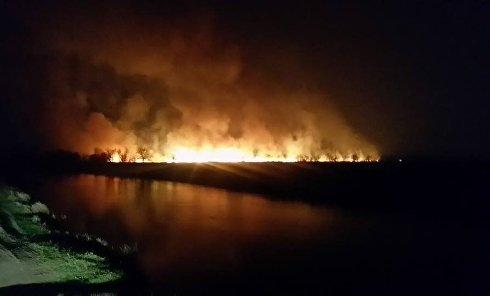 Мощный пожар на Осокорках в Киеве. Горит камыш на болоте