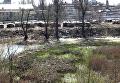 Цыганский табор на левом берегу Киева среди мусорных свалок. Видео