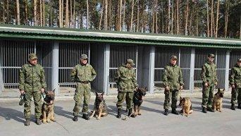 Полицейские-кинологи будут задействованы в обеспечении безопасности участников и гостей Евровидения-2017