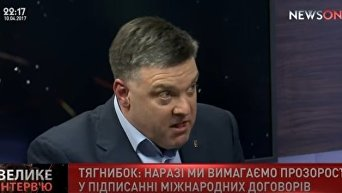 Олег Тягнибок о досрочных выборах Видео