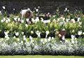 Белый сад в память о принцессе Диане