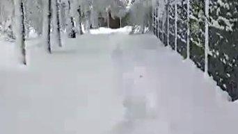 Снегопад в Днепре