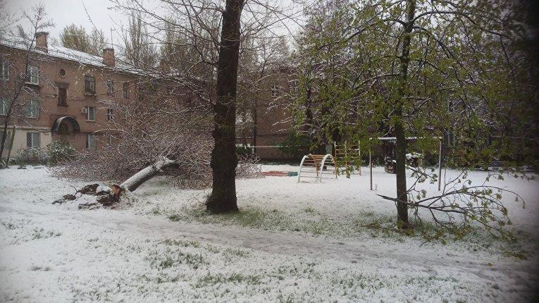 Снегопад в Запорожье
